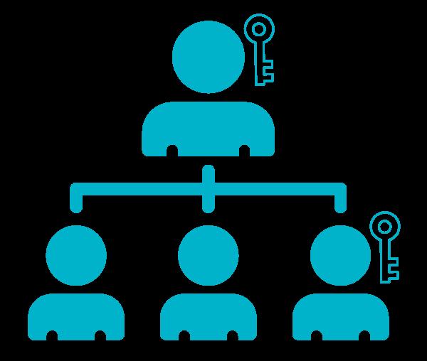 מערכת מותקנת בארגונים - שליטה ובקרה
